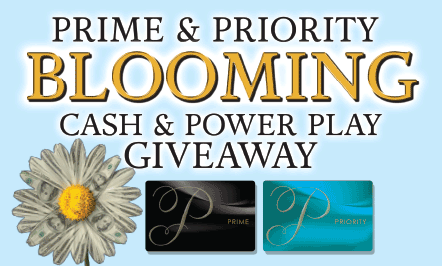 PRIME & PRIORITY Blooming
